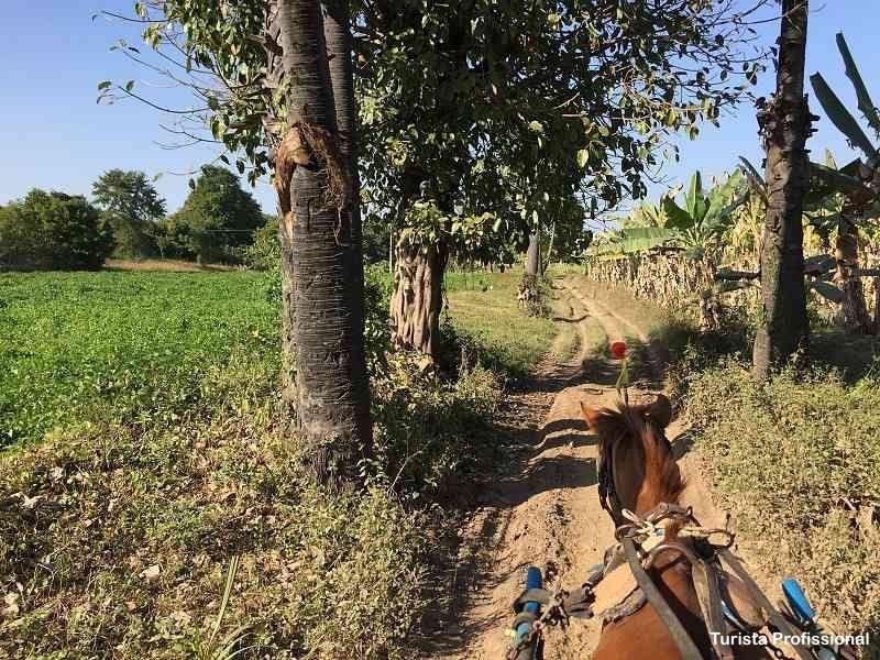 passeio de charrete em Myanmar