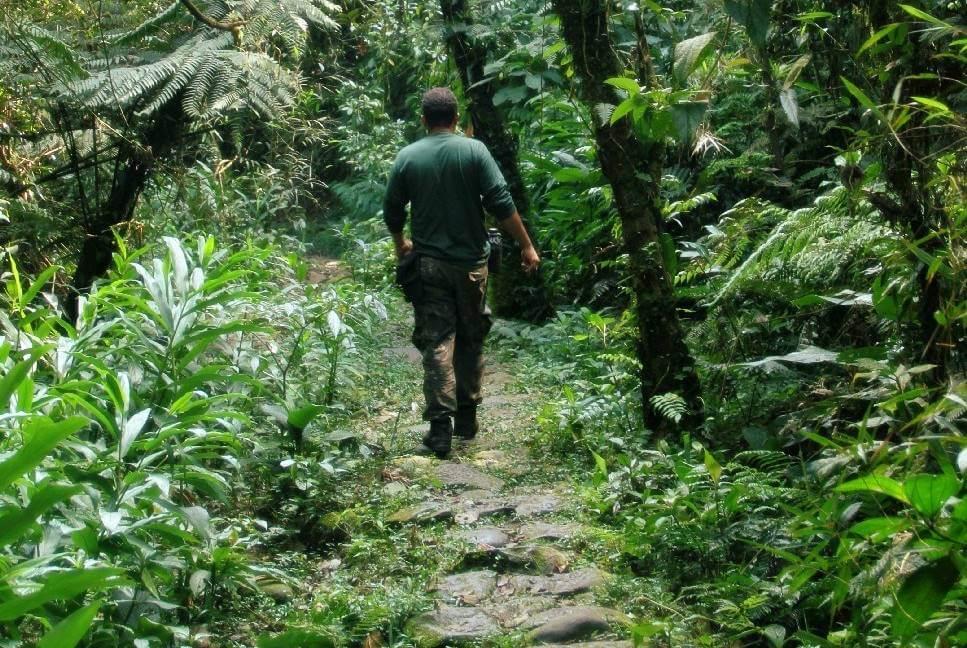 trilha do mirante paranapiacaba - Paranapiacaba: como chegar, o que fazer, trilhas, onde ficar e outras dicas
