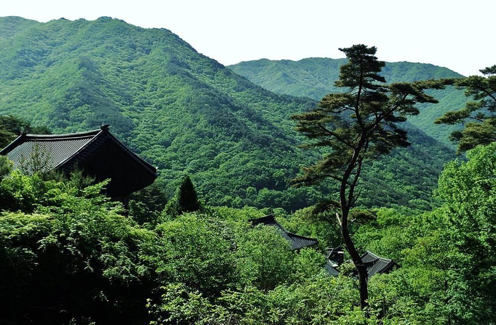 jirisan national park - 20 Pontos Turísticos da Coreia do Sul