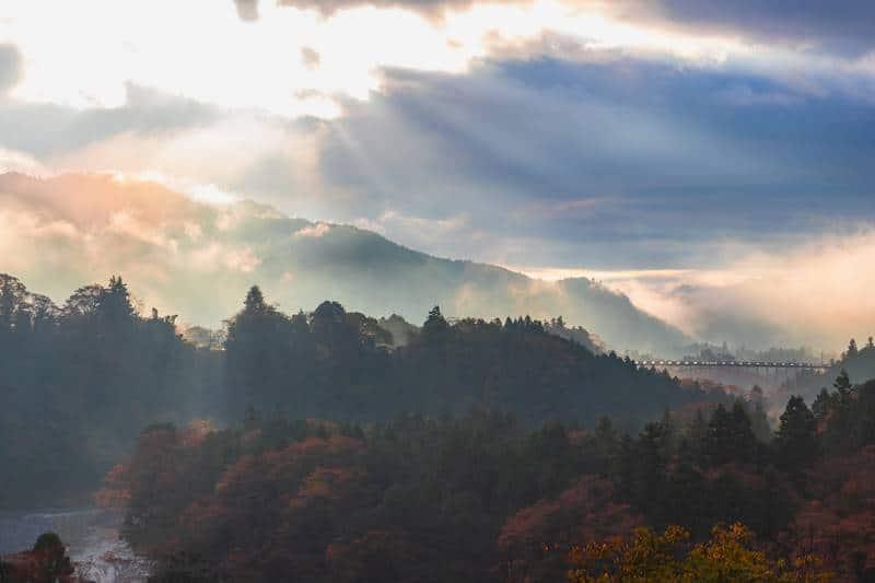 shinrin yoku Okutama - Banho de Floresta, conheça esta terapia japonesa